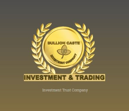 Become A Portfolio Manager With Ease With Bullioncaste