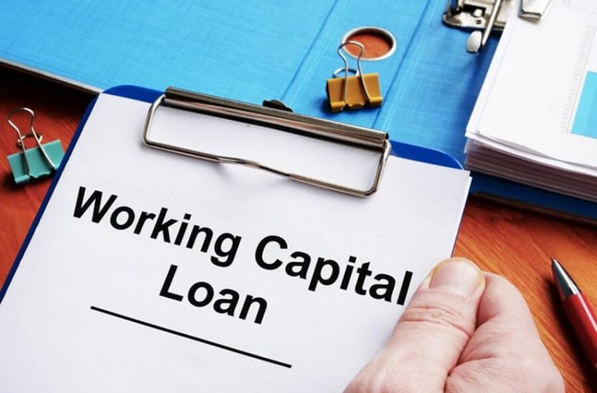 Everything one needs to know about Working Capital Loans