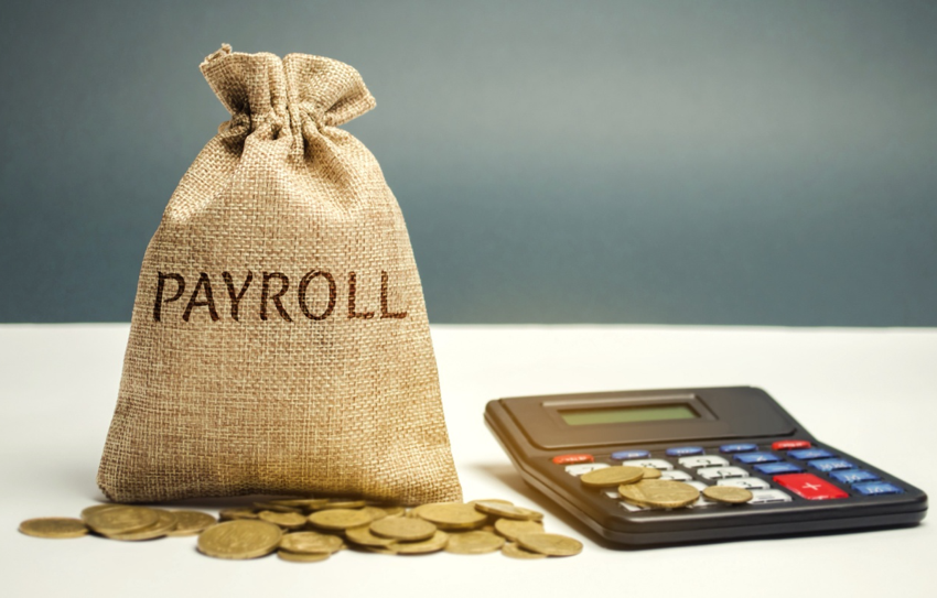 Simplest Way to Ensure your Payroll